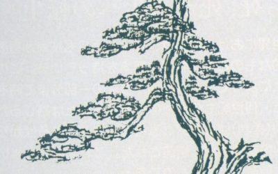 Confronto culturale con Kimura sensei 1996