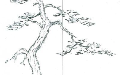 Confronto culturale con Kimura sensei 2003
