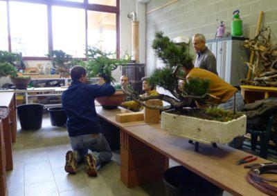 Seminari FKB Italia 2014-07