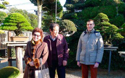 A Premonition of Bonsai – BCI